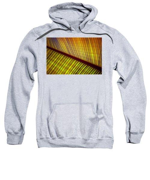 Banana Leaf 8603 Sweatshirt