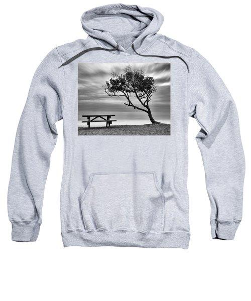 Beach Tree Sweatshirt
