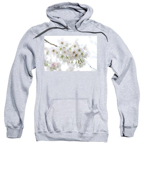 Beautiful White Cherry Blossoms Sweatshirt
