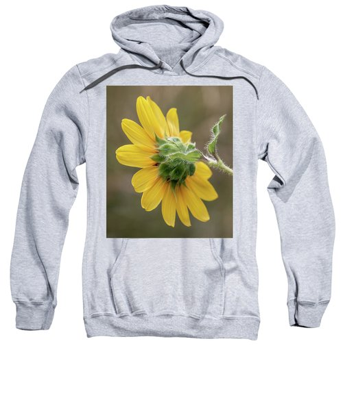 Beauty From Behind Sweatshirt