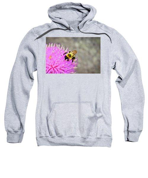 Bee On Pink Bull Thistle Sweatshirt