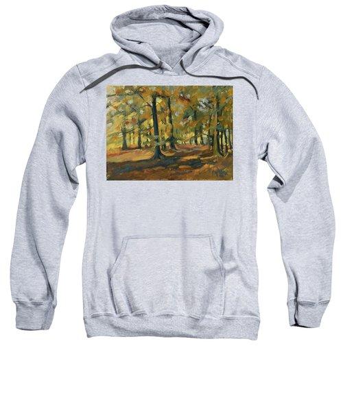 Beeches In Autumn Sweatshirt