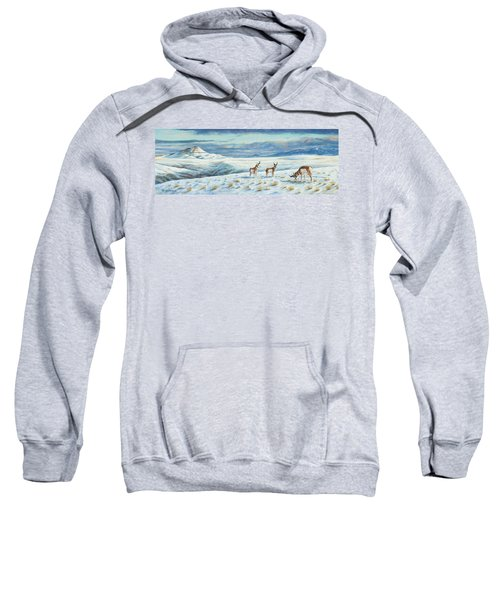 Belt Butte Winter Sweatshirt