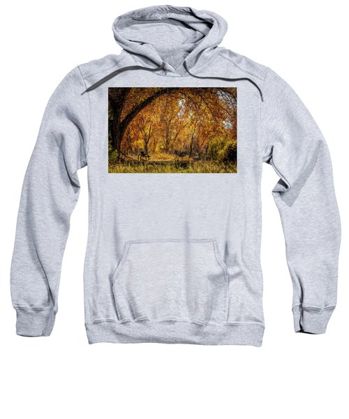 Bench With Autumn Leaves  Sweatshirt