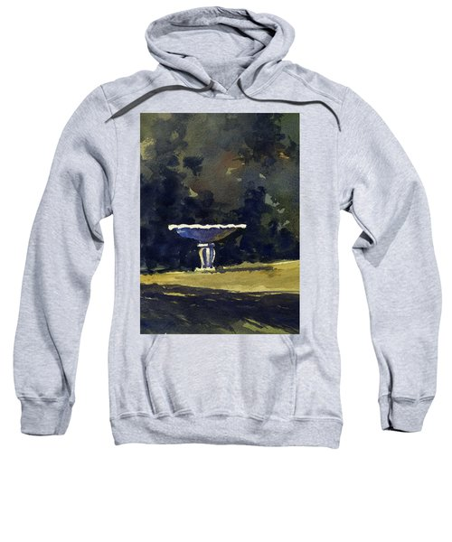 Bird Bath Sweatshirt