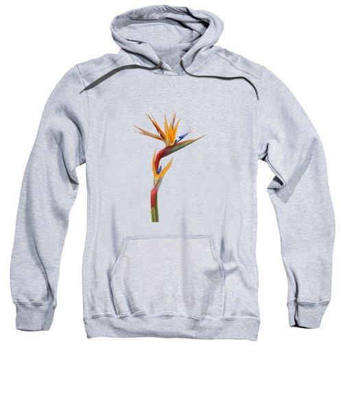 Bird Of Paradise - Flower - Transparent Sweatshirt