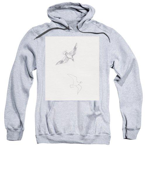 Black-billed Gulls Sweatshirt