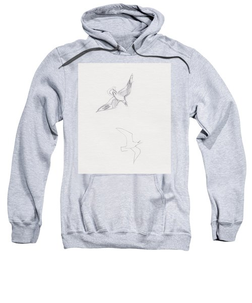Black-billed Gulls Sweatshirt
