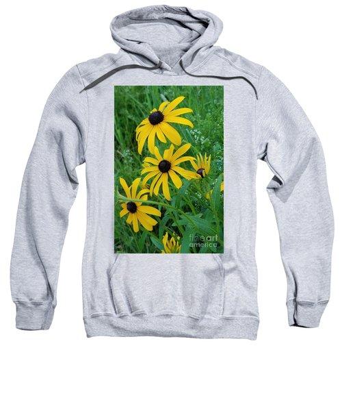 Black Eyed Susans 1 Sweatshirt