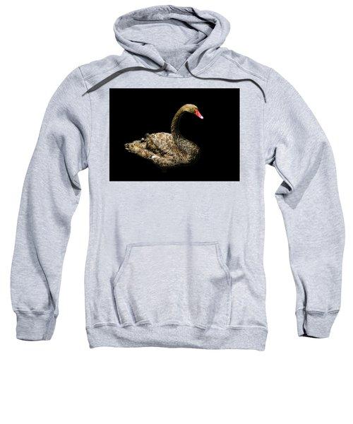 Black Swan On Black  Sweatshirt