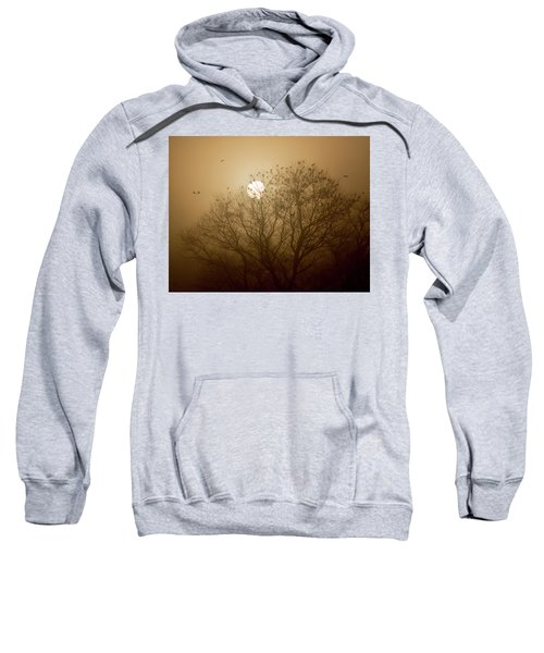 Blackbird Sunrise Sweatshirt