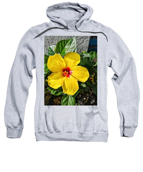 Bloom And Shine Sweatshirt