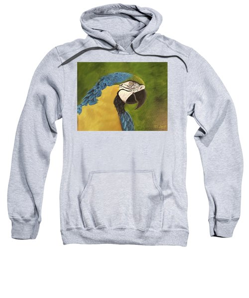 Blue And Gold Mccaw Sweatshirt