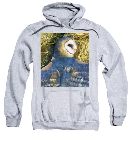 Blue Barn Owl Sweatshirt