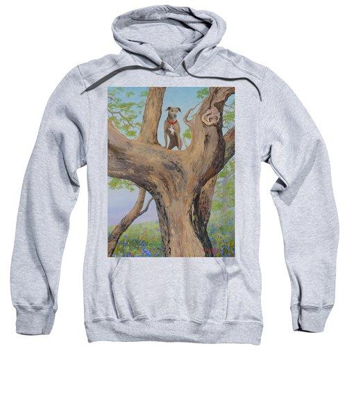 Blue Lacey In A Tree Sweatshirt