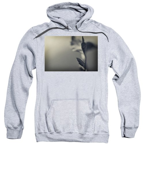 Blurred Lines Sweatshirt