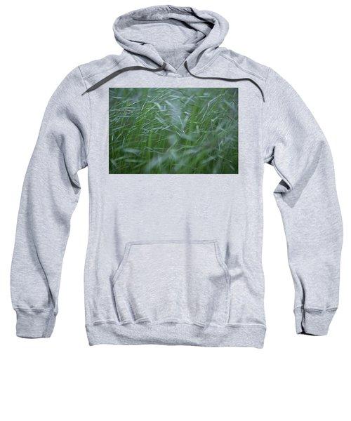 Blurry Wheat Sweatshirt