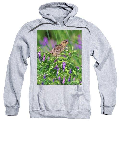 Bobolink Sweatshirt