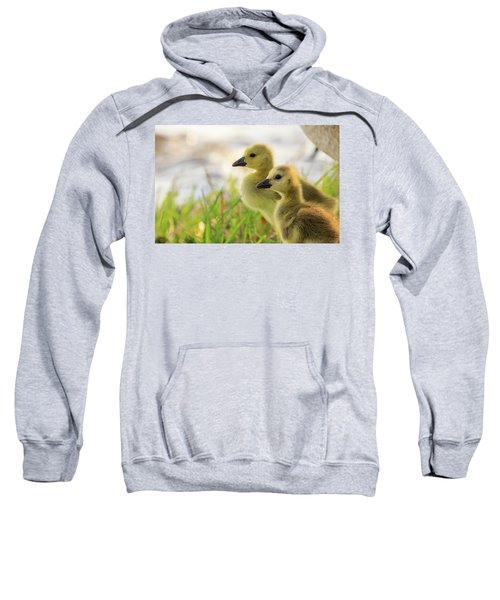 Boston Goslings Sweatshirt