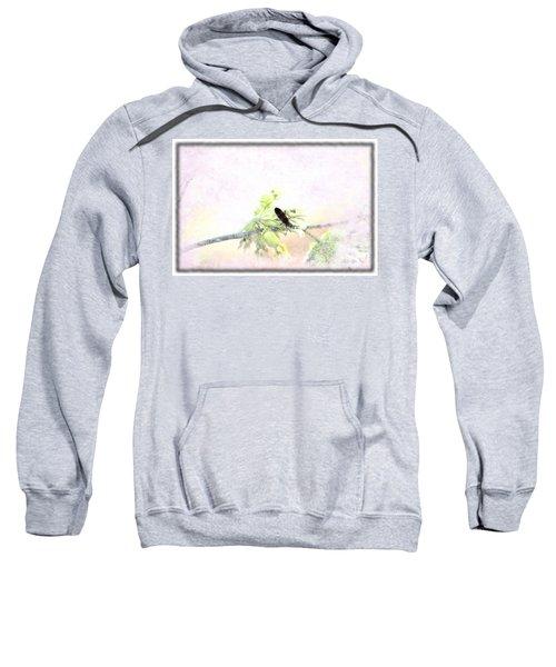 Boxelder Bug In Morning Haze Sweatshirt