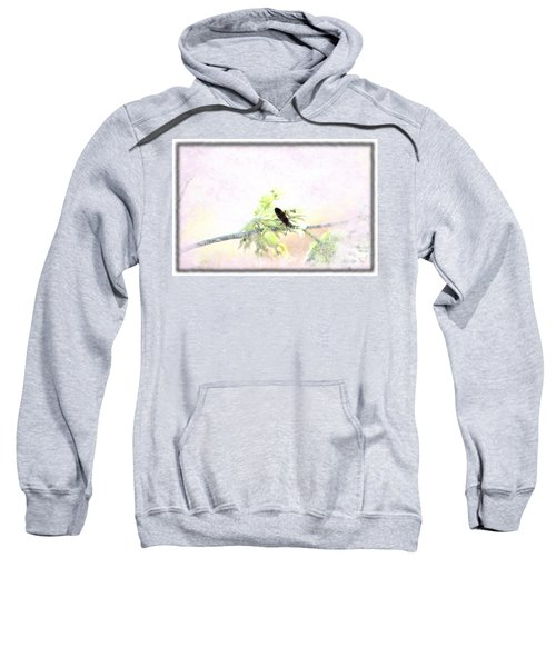 Boxelder Bug In Morning Haze Sweatshirt