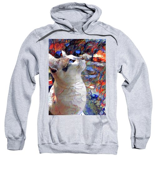 Brady The Half Siamese Half Tabby Cat Sweatshirt