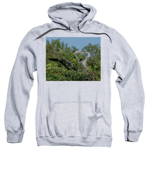 Breeding Herons Sweatshirt