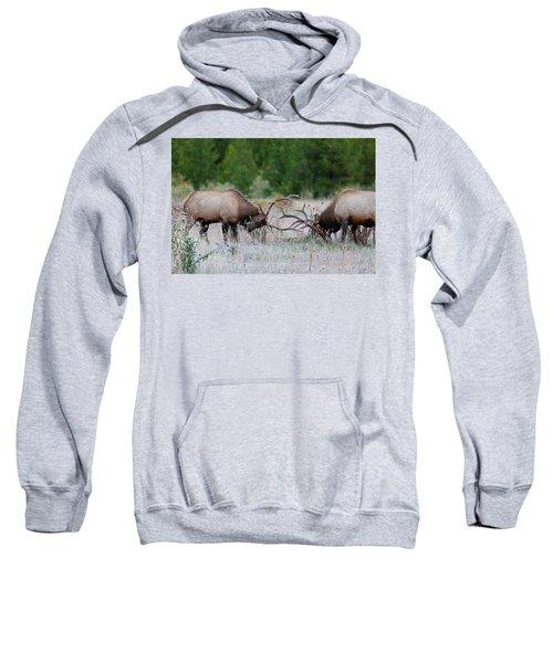 Bull Elk Battle Rocky Mountain National Park Sweatshirt