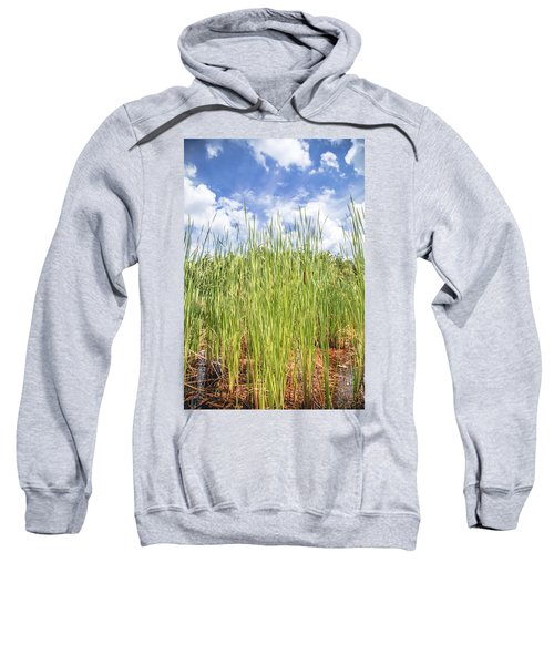 Bulrush Sweatshirt