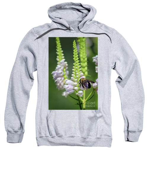 Bumblebee On Obedient Flower Sweatshirt