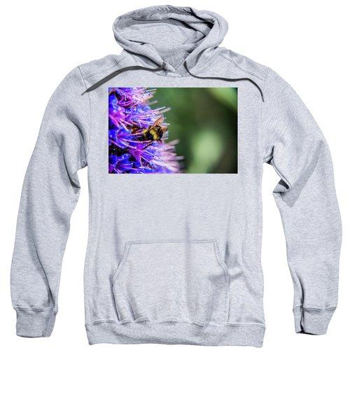 Busy Bee 2 Sweatshirt