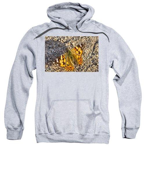 Butterfly Beauty  Sweatshirt
