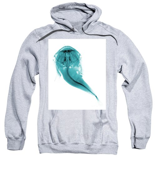 C022/5897 Sweatshirt