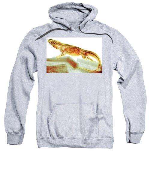 C025/8504 Sweatshirt