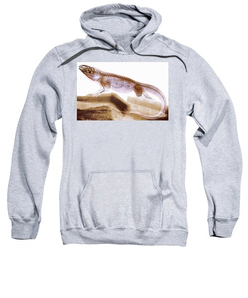 C025/8505 Sweatshirt