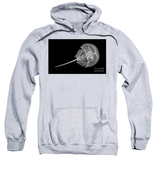 C037/4691 Sweatshirt