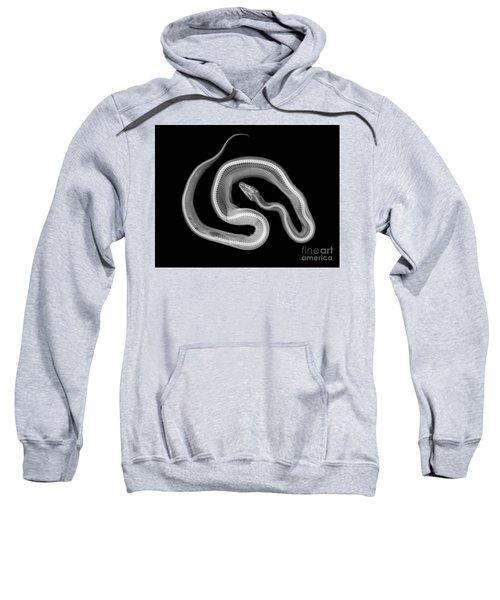 C037/4692 Sweatshirt