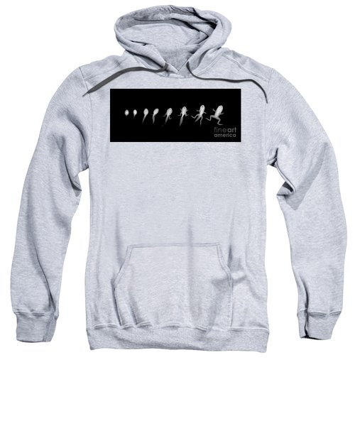 C037/4695 Sweatshirt