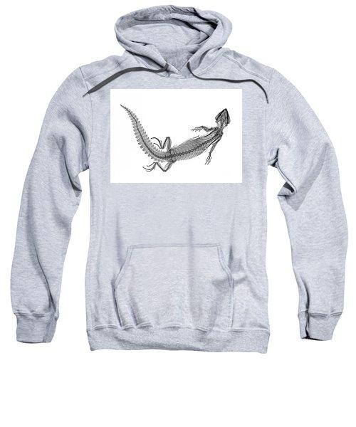C038/4648 Sweatshirt