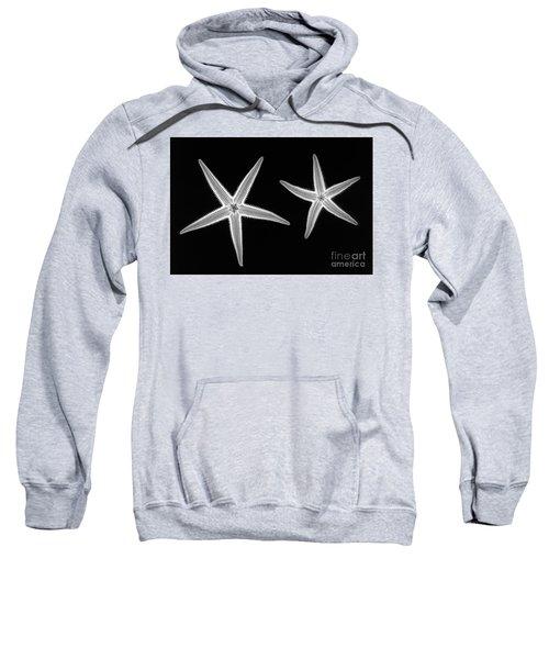 C038/4739 Sweatshirt