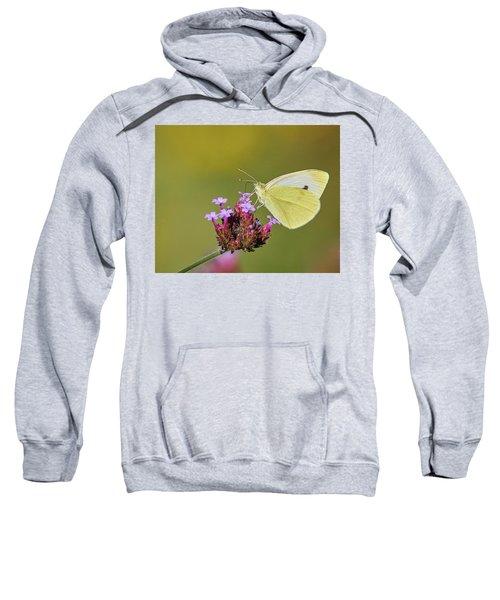 Cabbage White Butterfly Sweatshirt