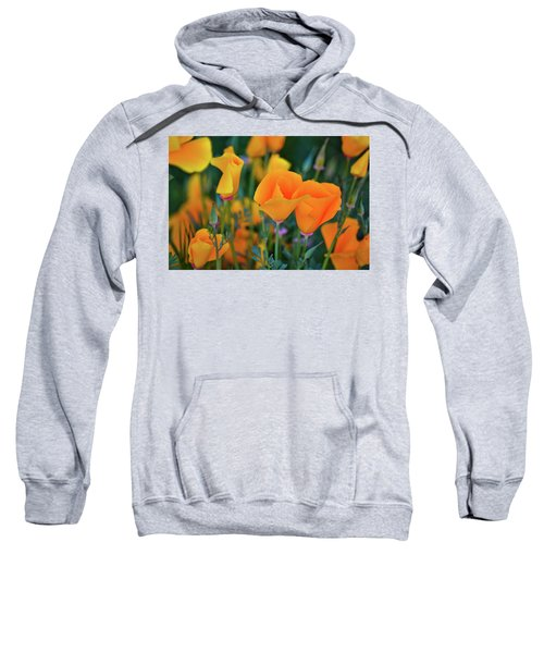 California Poppies Lake Elsinore Sweatshirt