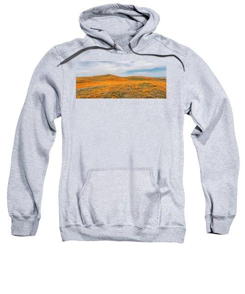 California Poppy Superbloom 2019 - Panorama Sweatshirt