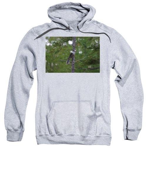 Canada Jay 101305 Sweatshirt