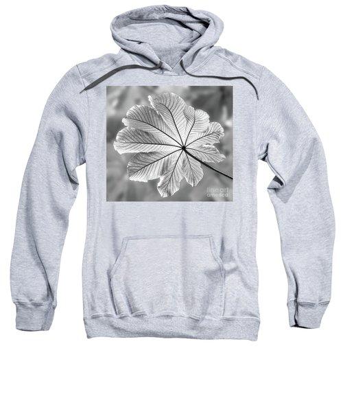 Canopy Sweatshirt