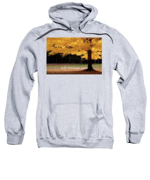 Canopy Of Gold Fall Colors Sweatshirt