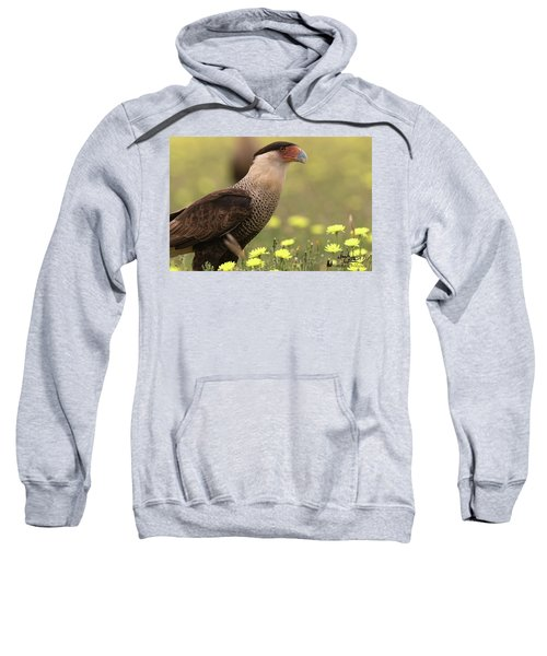 Caracara In Wildflowers Sweatshirt