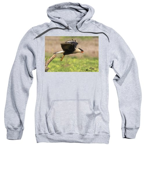 Caracara Taking Off Sweatshirt