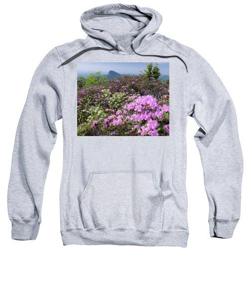 Catawba Rhododendron Table Rock  Sweatshirt