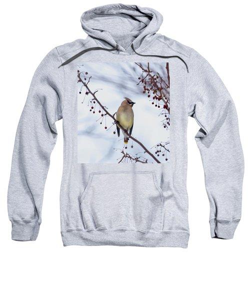 Cedar Waxwing  Sweatshirt